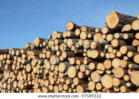 Stack of cut timber logs against clear blue sky. - stock photo
