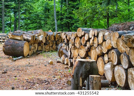 Stack of firewood in mountains waiting for winter. Pieniny mountains, Poland - stock photo