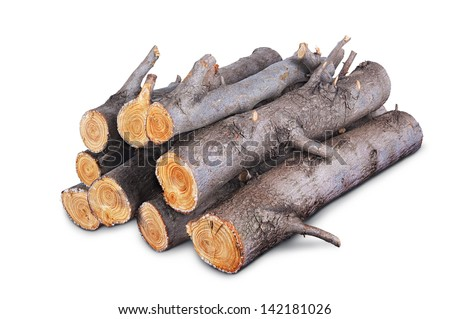 stack of firewood logs isolated on white background - stock photo