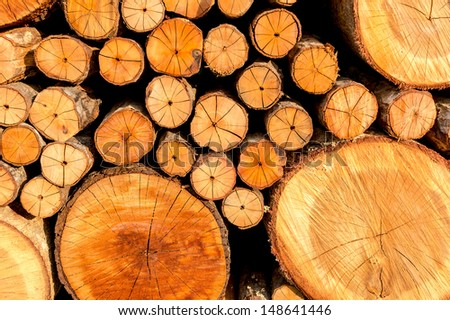 Stack of freshly chopped wood - stock photo