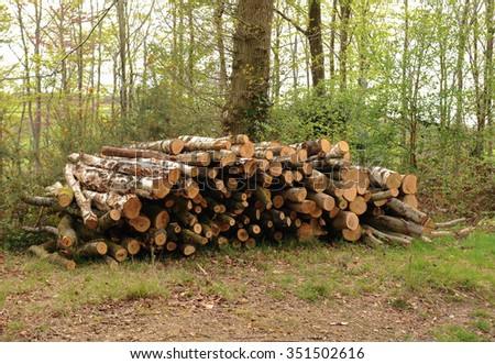 Stack of Logs in the Ancient Woodland of Stoke Woods near the City of Exeter in the County of Devon, England, UK - stock photo