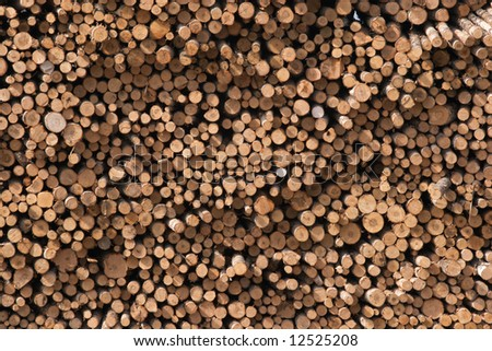 Stack of logs on saw mill texture - stock photo