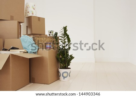 Stack of moving boxes and pot plant in new house - stock photo