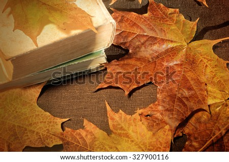 Stack of old books among the dry yellow maple leaves and bright sunlight - autumn still life.  Selective focus at the book's spine - shallow depth of field - stock photo