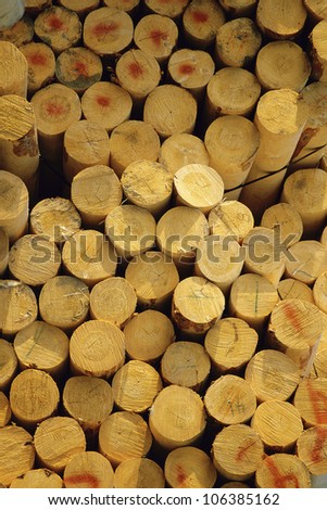Stack of prepared timber
