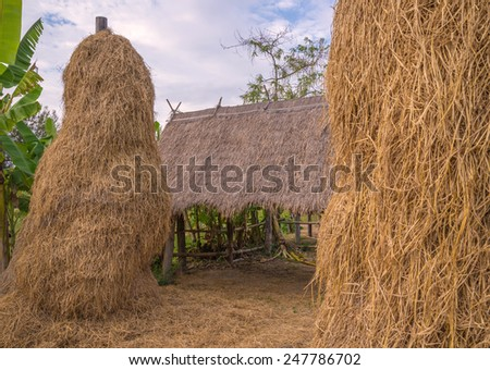 stack of straw or hay bales in a rural landscape - stock photo