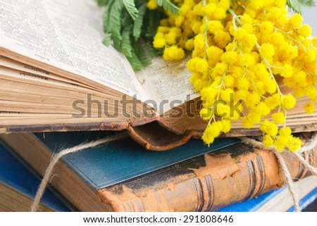 stack of vintage old books  with mimosa flowers close up  - stock photo