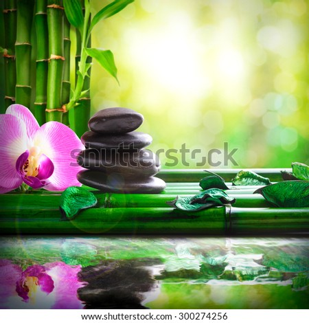 Stacked black stones, orchids and leaves on bamboo. Reflected in water in nature. Concept of calm and relaxation. Alternative treatments, massage, balance and meditation. Square composition. - stock photo