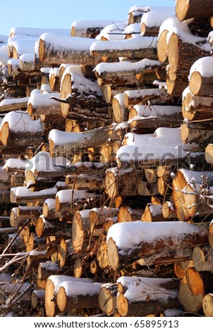 Stacked Firewood in Winter Snow - stock photo