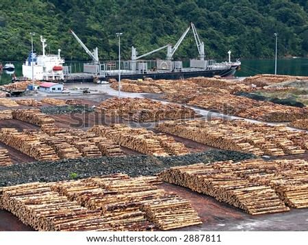 Stacked logs at dock in Marlborough Sounds, New Zealand - stock photo