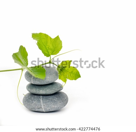 Stacked stones and green ivy  - stock photo