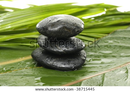 Stacked stones on palm leaf and bird of paradise leaf