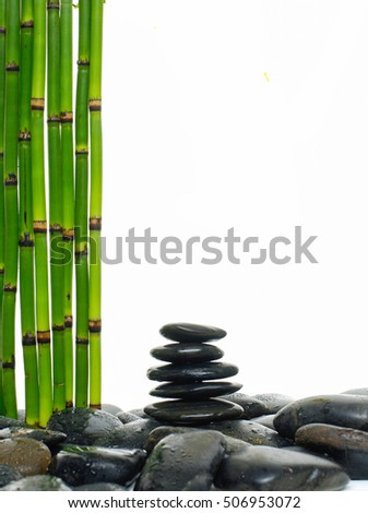 Stacked wet stones and bamboo grove