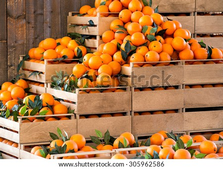 Stacked wooden crates of fresh ripe oranges on display at a farmers market or store from a freshly harvested agricultural crop - stock photo