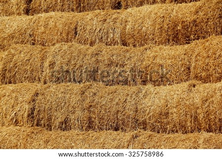 Stacks of hay close-up. - stock photo