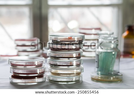 Stacks of Petri dishes with bacteria growing in them. Medical tests and research - stock photo