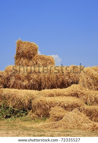 stacks of straw haystack countryside view - stock photo