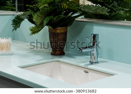 Stainless steel faucet and flowers