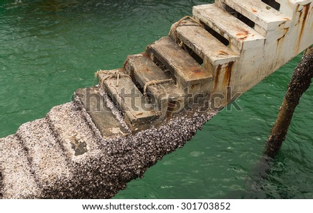 Stairs harbor filled with barnacles. - stock photo