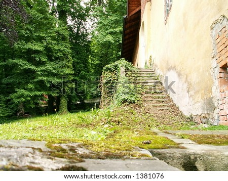 stairs in nature - stock photo