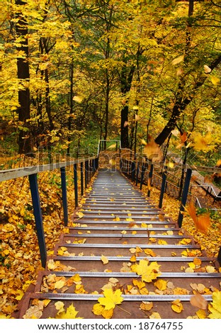 Stairs into autumn with falling leaves - stock photo