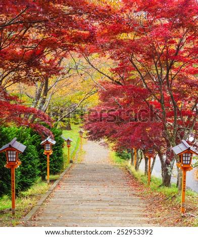 Stairway to chureito pagoda in autumn, Fujiyoshida, Japan - stock photo