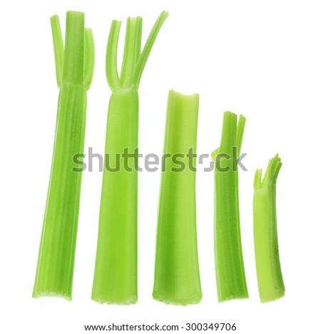 Stalks of Celery on White Background - stock photo