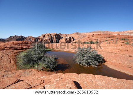 Standing water with bushes atop a petrified Sand Dune -  Snow Canton Utah - stock photo