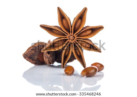 Star anise on white background - stock photo