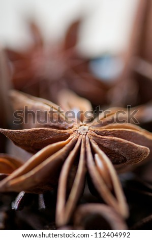 Star anise seed, close-up, shallow DOF - stock photo