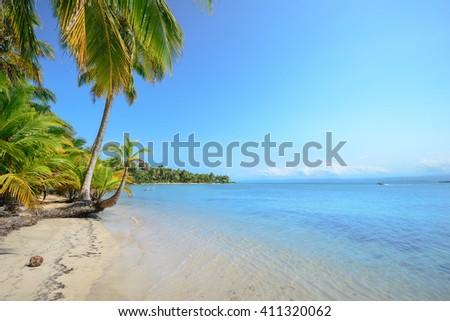 Star fish beach in Bocas Del Toro, Panama - stock photo