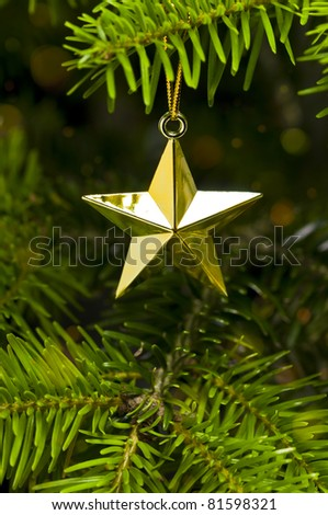 Star shape Christmas decoration in real tree - stock photo