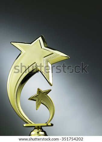 star shape trophy on the gray background - stock photo