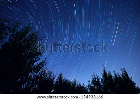 Star trails and trees silhouette in the night - stock photo
