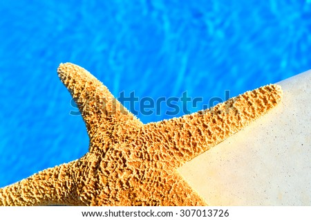 Starfish against blue water in the swimming pool - stock photo
