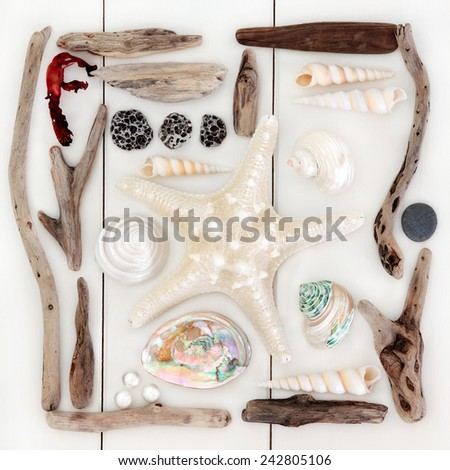 Starfish and sea shell selection, driftwood, pearls and seaweed over wooden white background. - stock photo