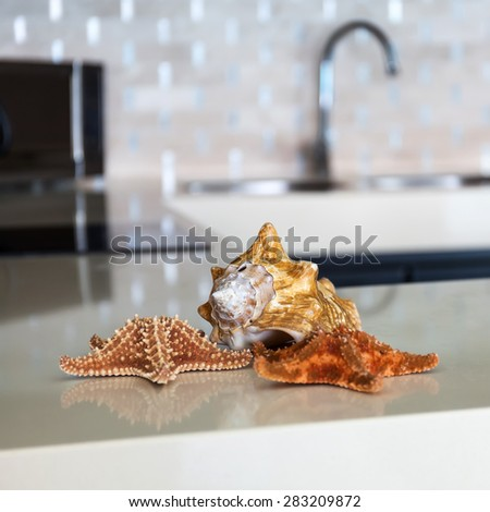 Starfish and seashell on stone table top at modern caribbean kitchen - stock photo