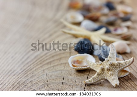Starfish and seashells on a wooden rustic board - stock photo