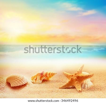 Starfish and seashells on the summer beach - stock photo