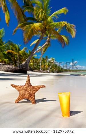 Starfish and sunblock tube on caribbean sea coastline with palms, Dominican Republic - stock photo