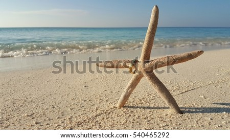 Starfish and wedding gold ring on the beach background