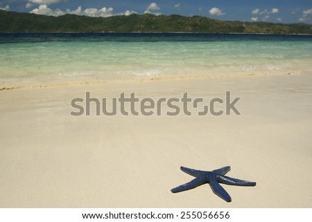 Starfish on a beach sand, Sulu sea, Indonesia - stock photo