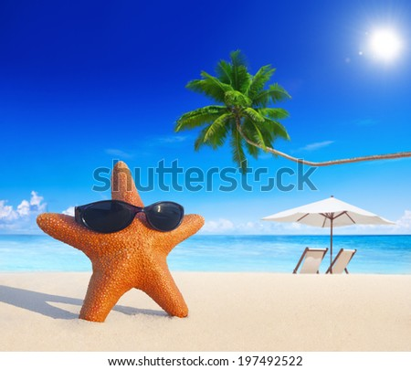 Starfish on a tropical beach. - stock photo