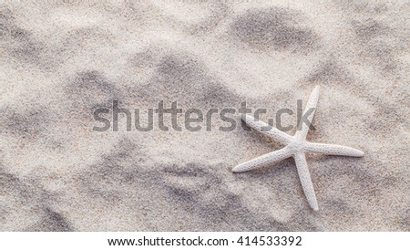 Starfish on beach sand for summer and beach concept. Studio shot beach background. - stock photo