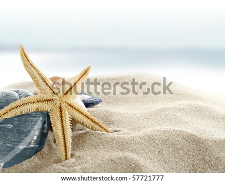 Starfish on the Beach - stock photo