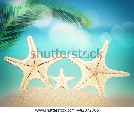 Starfish on the summer beach. Palm, sand, ocean as background. - stock photo