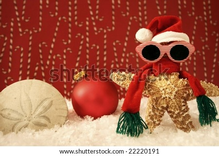 Starfish Santa scene - stock photo
