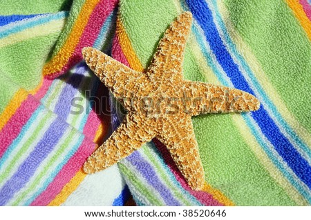 starfish / seastar laying on beach towel - stock photo