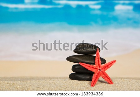 Starfishes and pebbles on the sandy seashore - stock photo
