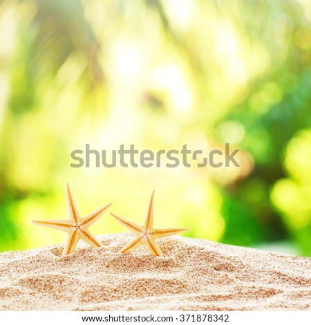 Starfishes on sand against blurred nature background - stock photo